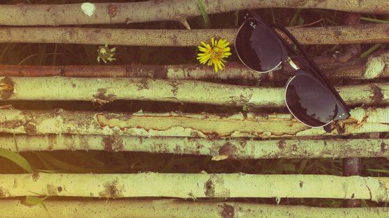 zonnebril festival